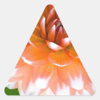 Orange und weißer Ruhm Dreieckiger Aufkleber