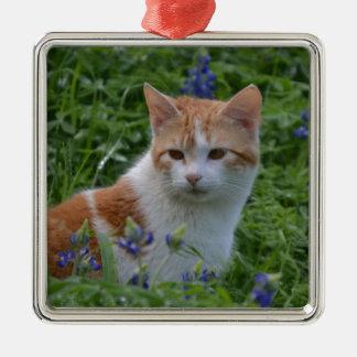 Orange und weißer Tabby Quadratisches Silberfarbenes Ornament