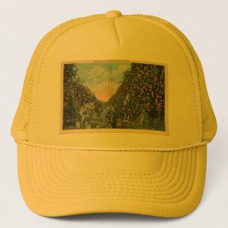 Orange Waldung Floridas Kappe