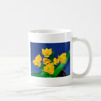Oranjezicht Kaffeetasse