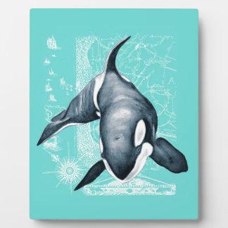 Orca-aquamarines Weiß Fotoplatte