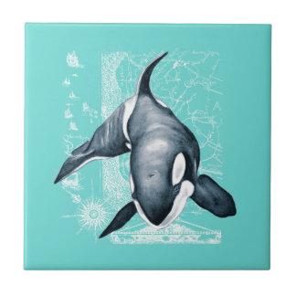 Orca-aquamarines Weiß Keramikfliese