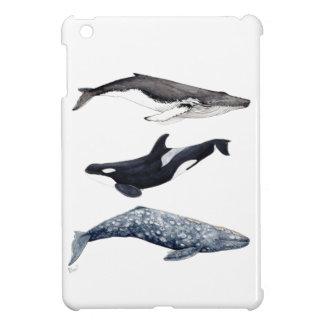 Orca, buckliger Wal und grauer Wal, iPad Mini Hülle