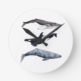 Orca, buckliger Wal und grauer Wal, Runde Wanduhr