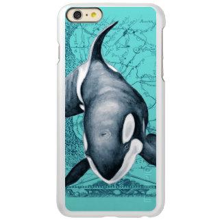 Orca-Karte aquamarin