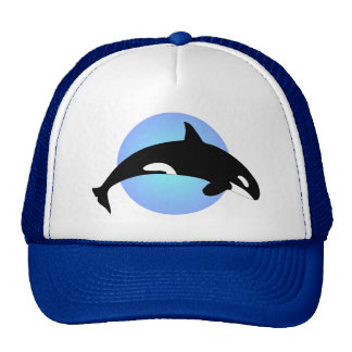 Orca-Mörder-Wal-Silhouette-Blau-Kreis Kult Kappen
