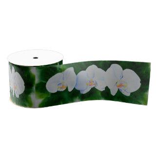 Orchidee 3 ripsband