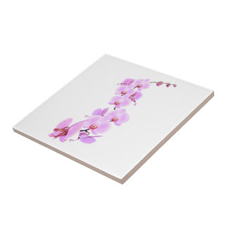 Orchidee-Drache Keramikfliese