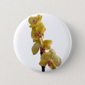 Orchidee in der Blüte für Geschenk Runder Button 5,7 Cm