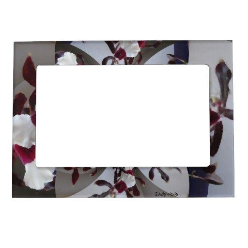 orchidee magnet bilderrahmen zazzle. Black Bedroom Furniture Sets. Home Design Ideas