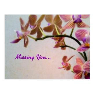 Orchidee vermisst Sie Postkarte