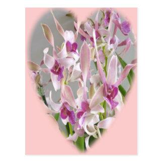 Orchideeherz Postkarte