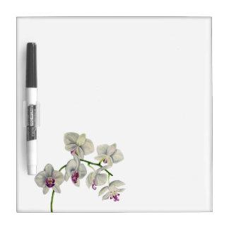 Orchideen-Aquarell-Malerei Memoboard