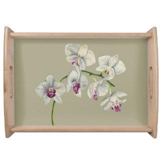 Orchideen-Aquarell-Malerei Serviertablett
