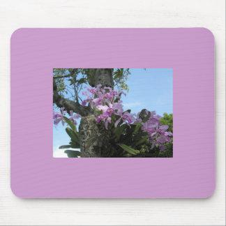 Orchideen-Blume Mousepad -
