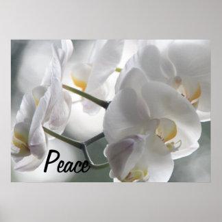 Orchideen-Blumen-FriedensLiebe-Schicksals-Geschenk Posterdrucke