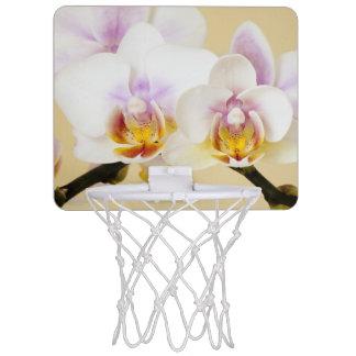 Orchideen-Blumenblüte Mini Basketball Netz