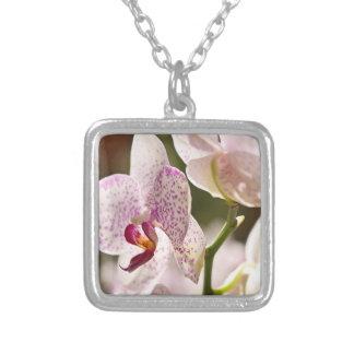 Orchideen durch Shirley Taylor Versilberte Kette