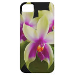Orchideen-Handy-Fall iPhone 5/5s iPhone 5 Etuis