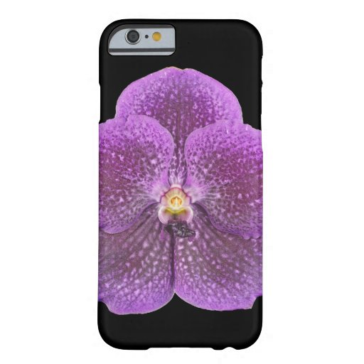 Orchideen-Handy-Fall iPhone 6 Fall Barely There iPhone 6 Hülle