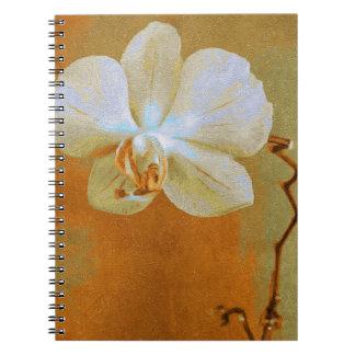 Orchideen in den Schatten der Orange Spiral Notizblock