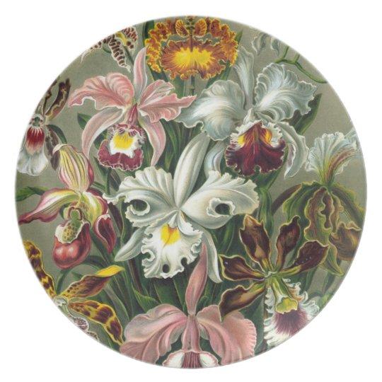 Orchideen-Paradies Teller