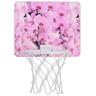 Orchideentraum Mini Basketball Netz