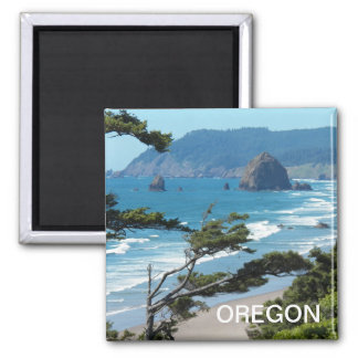 Oregon-Meerblick-Foto Quadratischer Magnet