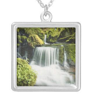 Oregon, Wasserfall in Willamette Staatsangehörigem Versilberte Kette