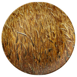 Oregon-Weizen Porzellanteller