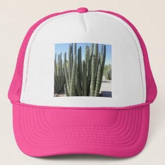 Orgelpfeife-Kaktus Truckerkappe