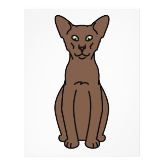 Orientalischer Zimt-u. Kitz-Katzen-Cartoon Flyer