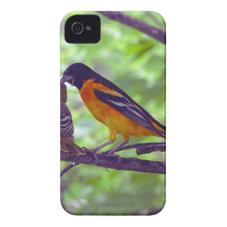 Oriole Case-Mate iPhone 4 Hülle