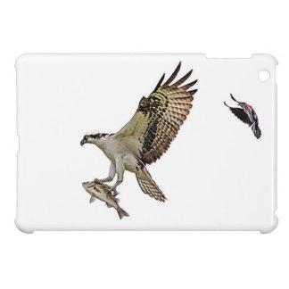Osprey, der durch eine rotgeflügelte Amsel gejagt iPad Mini Hülle