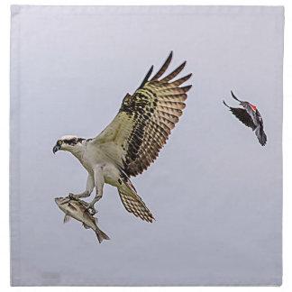 Osprey, der durch eine rotgeflügelte Amsel gejagt Serviette