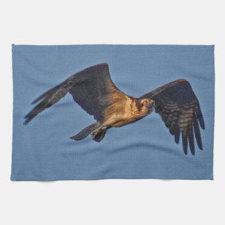 Osprey-Fische Eagle, das am Sonnenuntergang fliegt Geschirrtuch