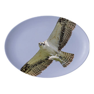 Osprey mit einem Fisch Porzellan Servierplatte