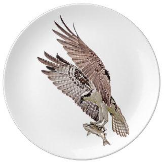 Osprey mit einem Fisch Teller