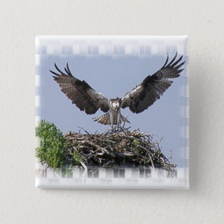 Osprey-Nest-Button Quadratischer Button 5,1 Cm