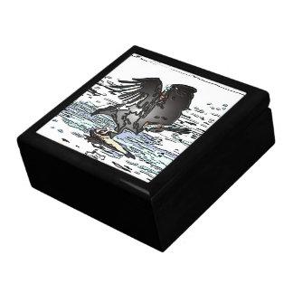 Osprey-Raubvogel-Vogel-Tier-Tier-Sumpfgebiete Erinnerungskiste