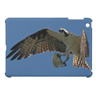Osprey-Raubvogel-Vogel-Tier-Tier-Sumpfgebiete iPad Mini Hülle