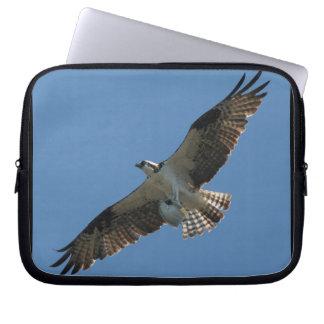 Osprey-Raubvogel-Vogel-Tier-Tier-Sumpfgebiete Laptopschutzhülle