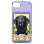 Osterei-Plätzchen - Labrador - Schwarzes iPhone 5 Etuis