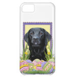 Osterei-Plätzchen - Labrador - Schwarzes Hüllen Für iPhone 5C