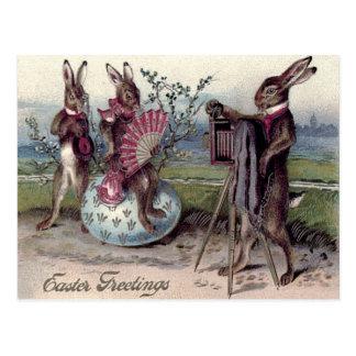 Osterhasen-Paar-Kamera-Ei Postkarte