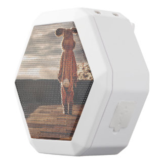 Osterhasengehen Weiße Bluetooth Lautsprecher
