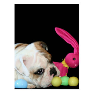 Ostern-Bulldoggenpostkarte Postkarte