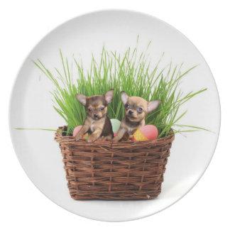 Ostern-Chihuahuawelpen Teller