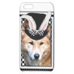 Ostern - etwas Häschen-Lieben Sie - Dingo iPhone 5C Cover