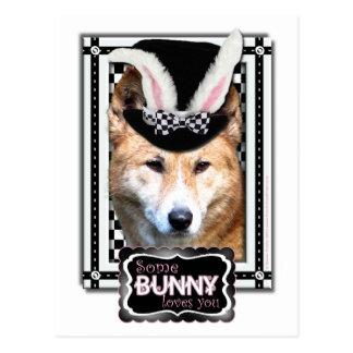 Ostern - etwas Häschen-Lieben Sie - Dingo Postkarte
